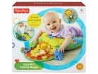 Mattel-Y6593-Fisher-Price-Cuscino-del-Leoncino-6