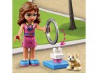 LEGO-Friends-The-game-area-of-​​Olivia's-hamster-5